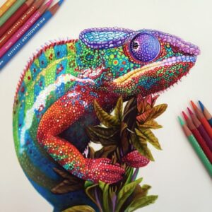 نقاشی حیوانات با مداد رنگی؛ هنرمند: Morgan Davidson