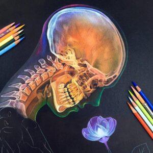 نقاشی چهره و استخوانبندی فانتزی با مداد رنگی؛ هنرمند: Morgan Davidson