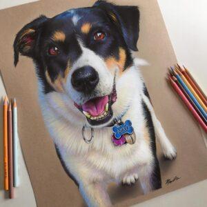 نقاشی حیوانات با مداد رنگی، سگ؛ هنرمند: Morgan Davidson