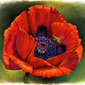 نقاشی طبیعت با مداد رنگی؛ هنرمند: Morgan Davidson