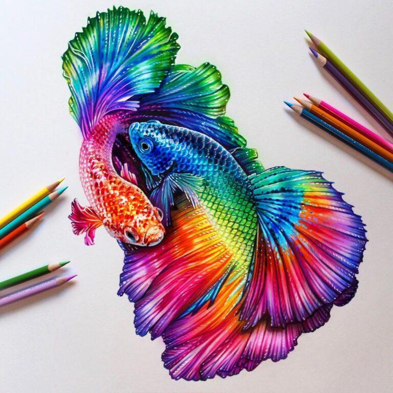 نقاشی حیوانات با مداد رنگی