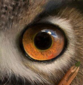 نقاشی حیوانات با مداد رنگی، هنرمند Paul Miller