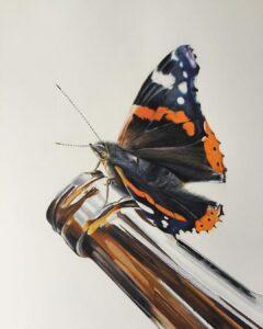 نقاشی حشرات با مداد رنگی، پروانه؛ هنرمند Paul Miller