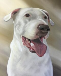 نقاشی حیوانات با مداد رنگی، سگ؛ هنرمند Paul Miller