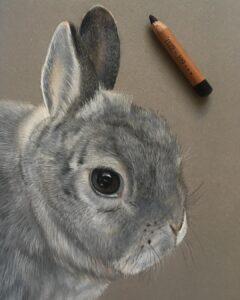 نقاشی حیوانات با مداد رنگی، خرگوش؛ هنرمند Paul Miller