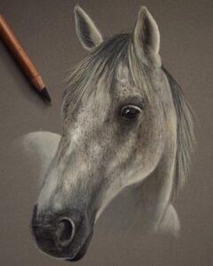 نقاشی حیوانات با مداد رنگی، اسب؛ هنرمند Paul Miller