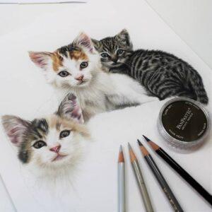 نقاشی سه بچه گربه با استفاده از مداد رنگی