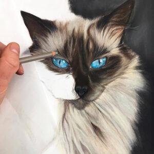نقاشی گربه چشم آبی