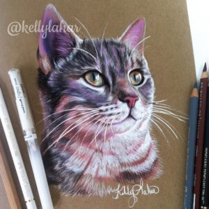 نقاشی صورت گربه با استفاده از مداد رنگی روی کاغذ رنگی و استفاده زیاد از مداد سفید