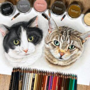 نقاشی صورت دو گربه با استفاده از مداد رنگی مارک فابر کاستل پلی کروم و توجه به جزئیات ریز آنها