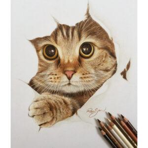 نقاشی صورت، چشمها و دست چپ گربه با استفاده از مداد رنگی مارک فابر کاستل پلی کروم