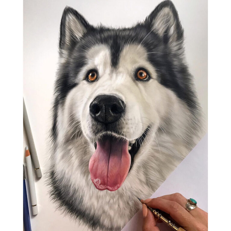 Dog-04