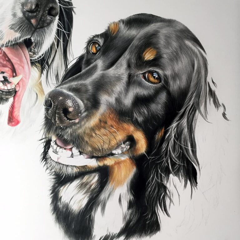 Dog-06