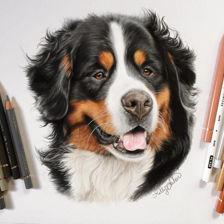 Dog-08
