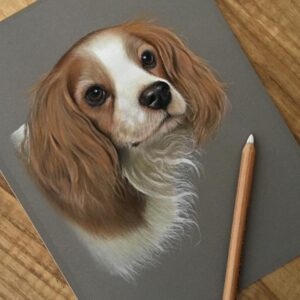 نقاشی چهره سگ روی کاغذ رنگی و با استفاده از مداد رنگی